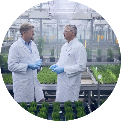 Two scientists in a lab testing fungicides